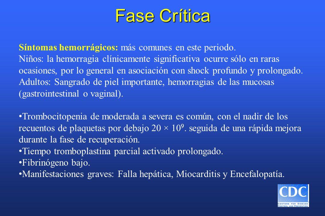 Fase Crítica Síntomas hemorrágicos: más comunes en este periodo. Niños: la hemorragia clínicamente significativa ocurre sólo en raras ocasiones, por l