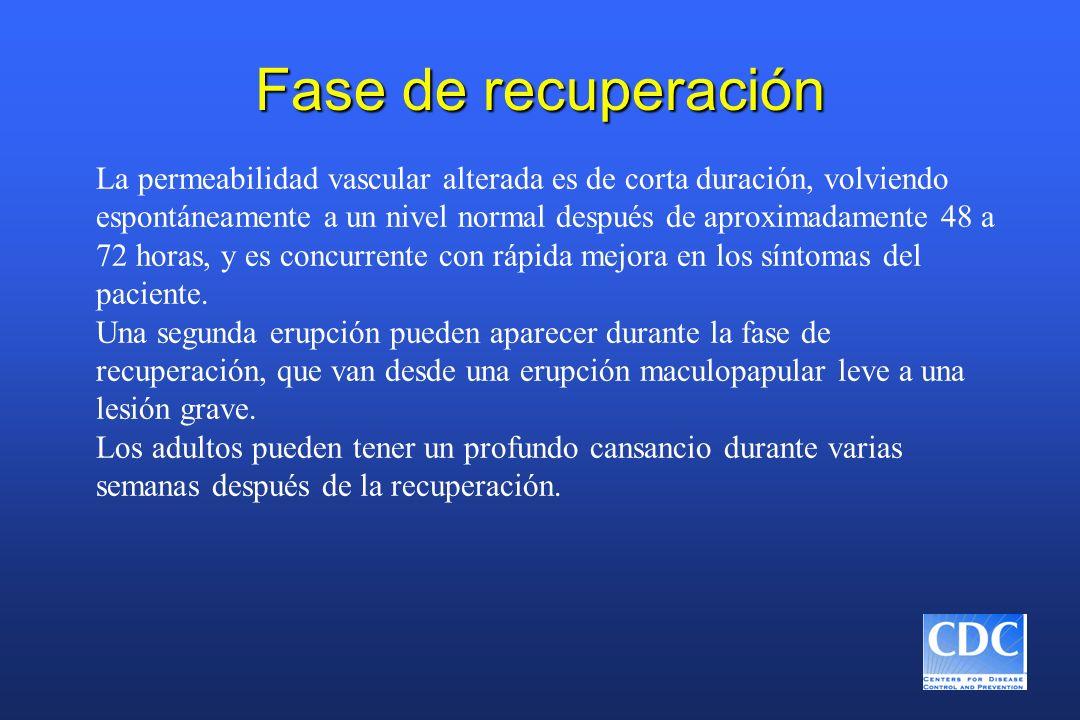 Fase de recuperación La permeabilidad vascular alterada es de corta duración, volviendo espontáneamente a un nivel normal después de aproximadamente 4