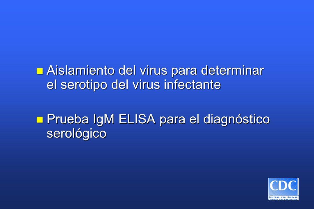 n Aislamiento del virus para determinar el serotipo del virus infectante n Prueba IgM ELISA para el diagnóstico serológico