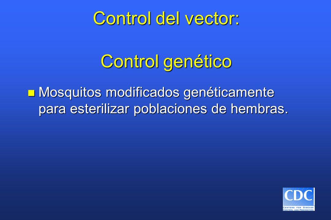 Control del vector: Control genético n Mosquitos modificados genéticamente para esterilizar poblaciones de hembras.