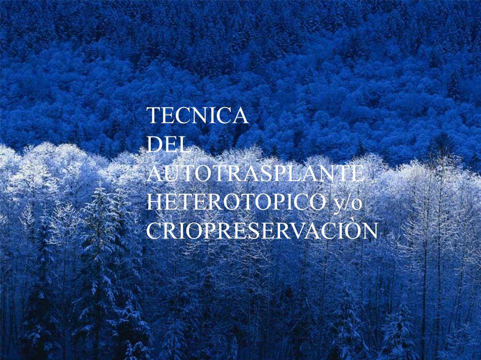 TECNICA DEL AUTOTRASPLANTE HETEROTOPICO y/o CRIOPRESERVACIÒN