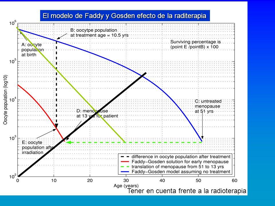 El modelo de Faddy y Gosden efecto de la raditerapia Tener en cuenta frente a la radioterapia