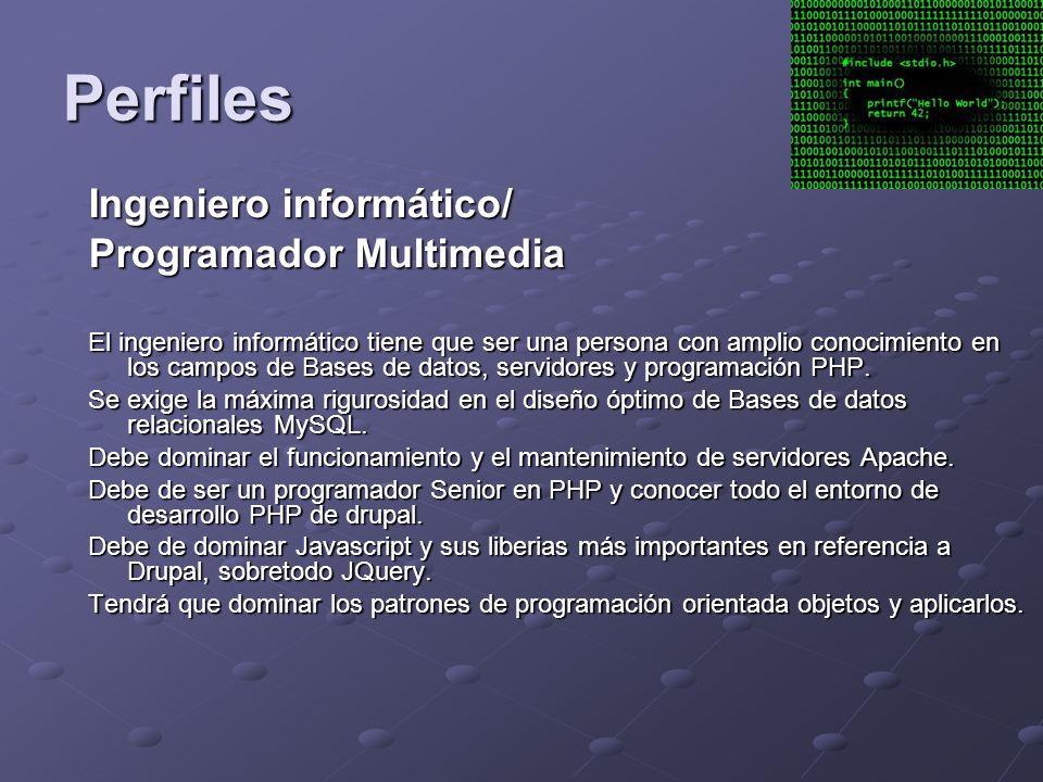 Perfiles Ingeniero informático/ Programador Multimedia El ingeniero informático tiene que ser una persona con amplio conocimiento en los campos de Bases de datos, servidores y programación PHP.