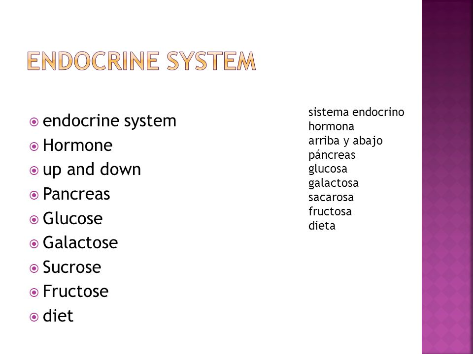 endocrine system Hormone up and down Pancreas Glucose Galactose Sucrose Fructose diet sistema endocrino hormona arriba y abajo páncreas glucosa galact
