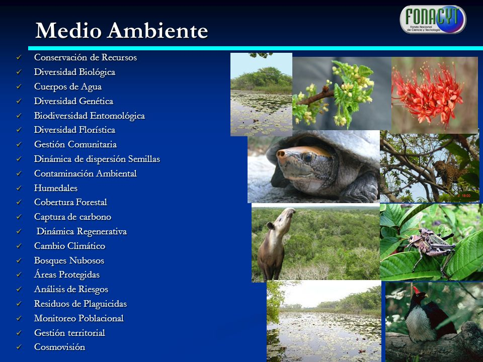 Conservación de Recursos Conservación de Recursos Diversidad Biológica Diversidad Biológica Cuerpos de Agua Cuerpos de Agua Diversidad Genética Divers