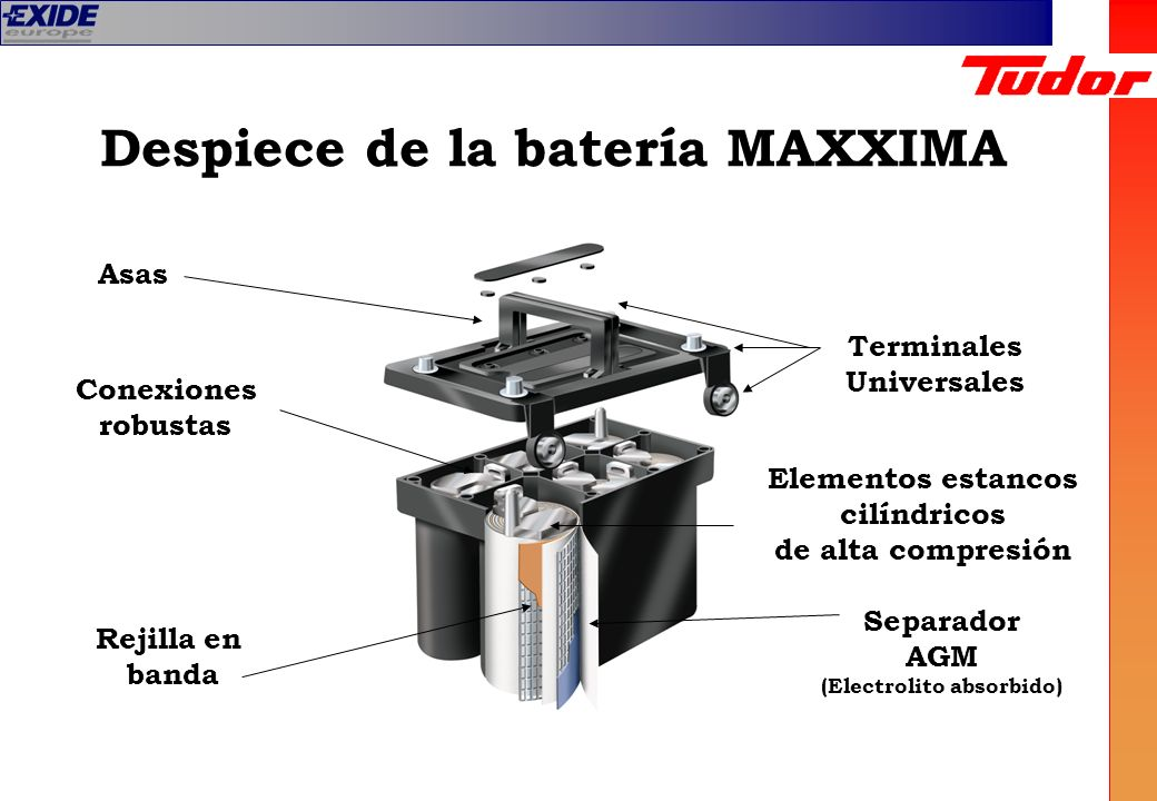 Despiece de la batería MAXXIMA Terminales Universales Conexiones robustas Rejilla en banda Separador AGM (Electrolito absorbido) Asas Elementos estanc