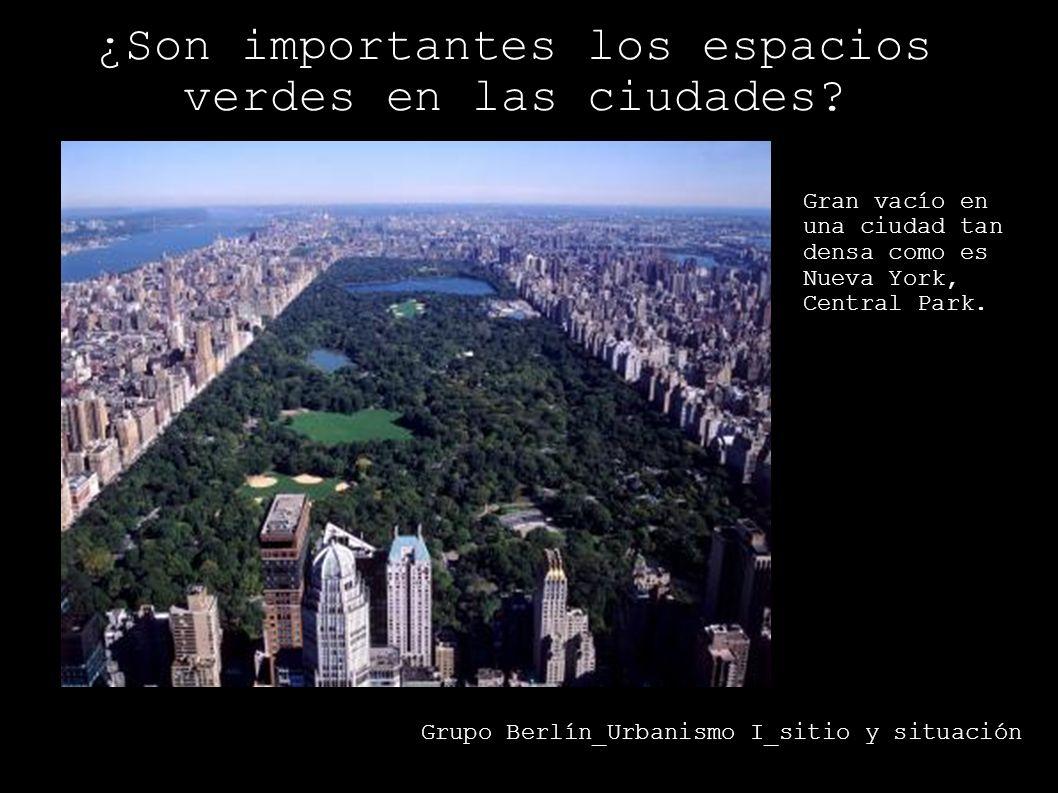 ¿Son importantes los espacios verdes en las ciudades? Grupo Berlín_Urbanismo I_sitio y situación Gran vacío en una ciudad tan densa como es Nueva York