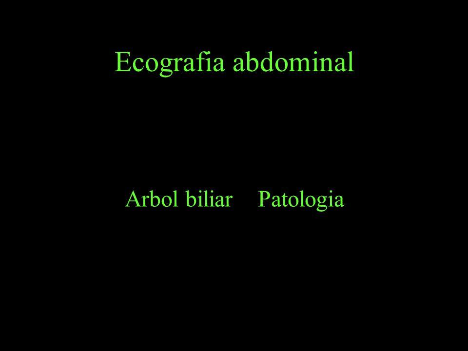 Ecografia abdominal Arbol biliar Patologia