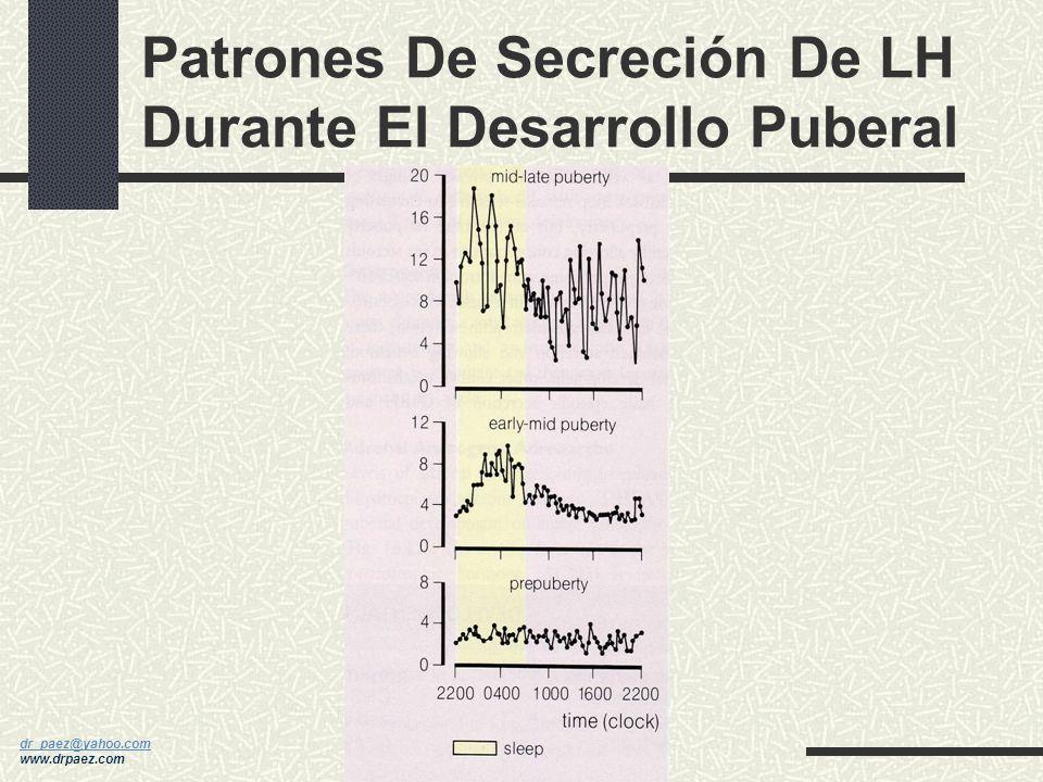 dr_paez@yahoo.com dr_paez@yahoo.com www.drpaez.com LH, FSH y E2 y ETAPA PUBERAL en MUJERES
