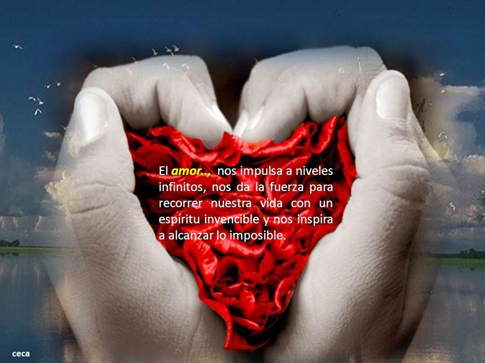 El amor.., nos da la sensibilidad de la contemplación.