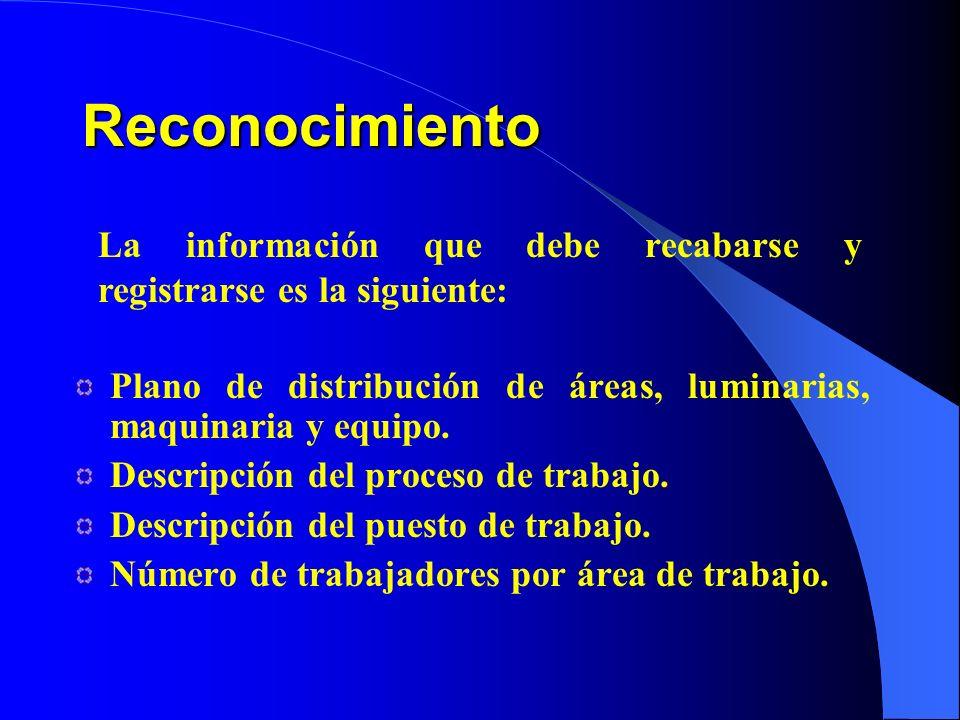 Plano de distribución de áreas, luminarias, maquinaria y equipo. Descripción del proceso de trabajo. Descripción del puesto de trabajo. Número de trab