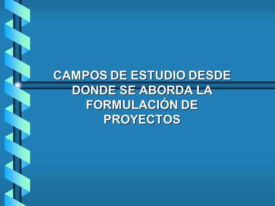 CAMPOS DE ESTUDIO DESDE DONDE SE ABORDA LA FORMULACIÓN DE PROYECTOS