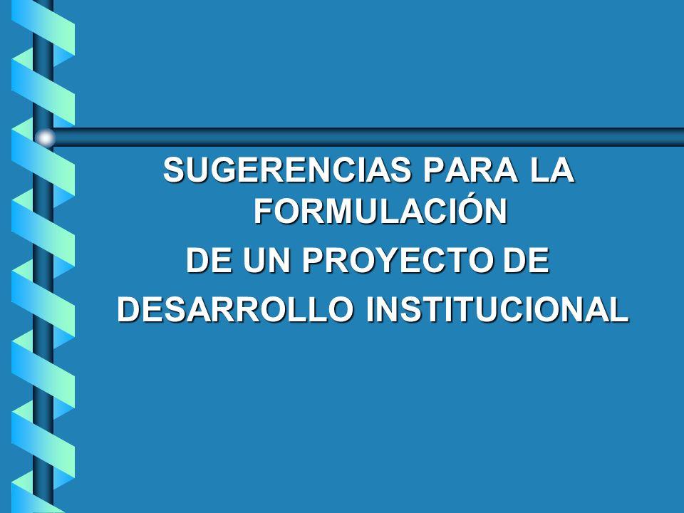SUGERENCIAS PARA LA FORMULACIÓN DE UN PROYECTO DE DESARROLLO INSTITUCIONAL DESARROLLO INSTITUCIONAL