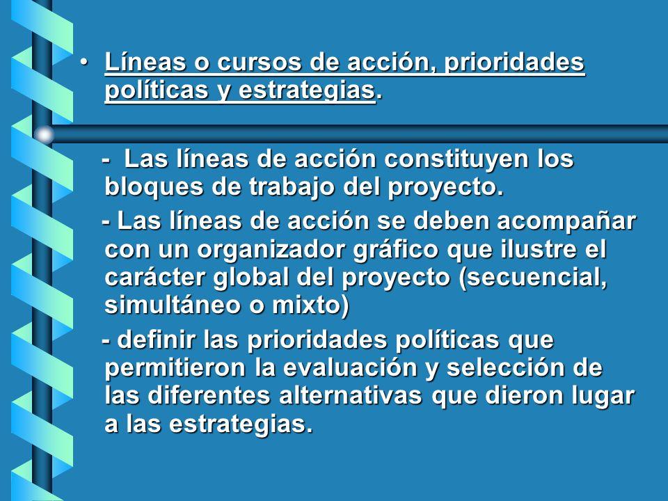 Líneas o cursos de acción, prioridades políticas y estrategias.Líneas o cursos de acción, prioridades políticas y estrategias. - Las líneas de acción