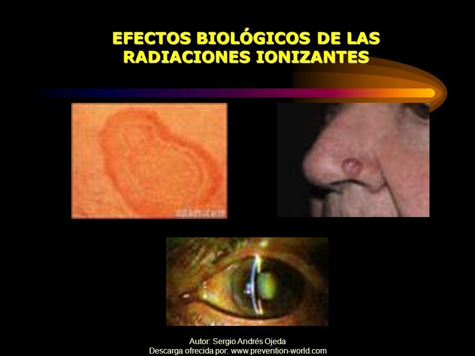 Autor: Sergio Andrés Ojeda Descarga ofrecida por: www.prevention-world.com EFECTOS BIOLÓGICOS DE LAS RADIACIONES IONIZANTES