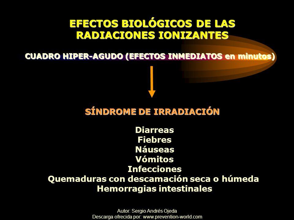 Autor: Sergio Andrés Ojeda Descarga ofrecida por: www.prevention-world.com EFECTOS BIOLÓGICOS DE LAS RADIACIONES IONIZANTES CUADRO HIPER-AGUDO (EFECTO