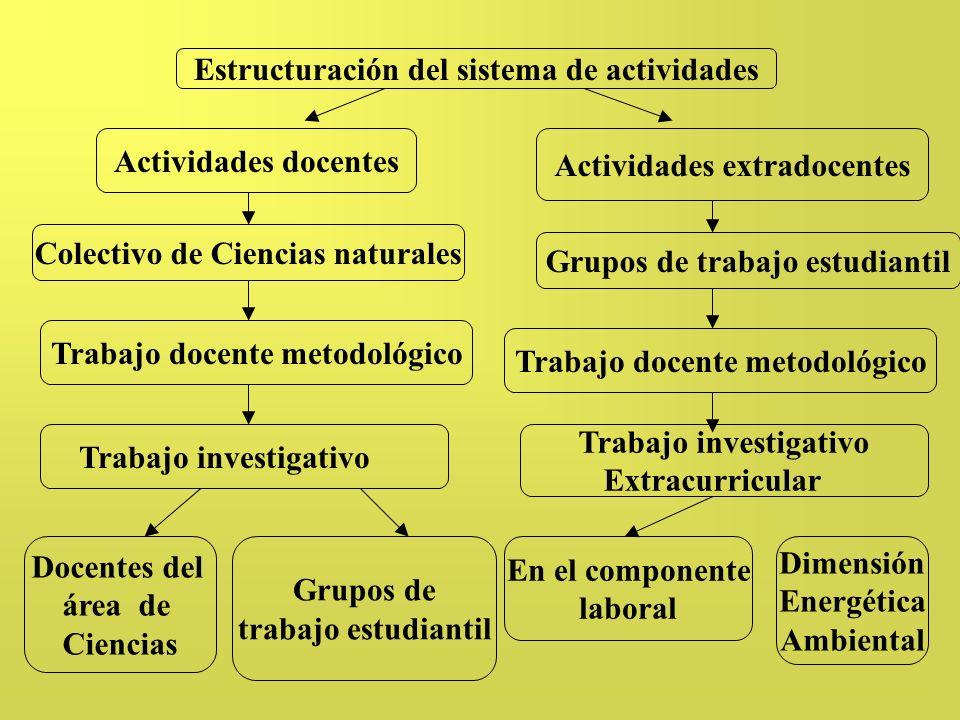 Estructuración del sistema de actividades Trabajo docente metodológico Actividades extradocentes Colectivo de Ciencias naturales Grupos de trabajo est
