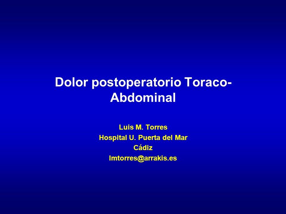 Dolor postoperatorio Toraco- Abdominal Luis M. Torres Hospital U. Puerta del Mar Cádiz lmtorres@arrakis.es