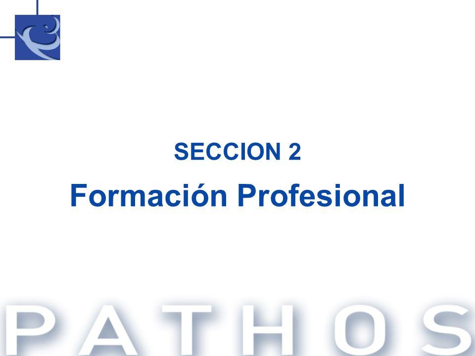 SECCION 2 Formación Profesional