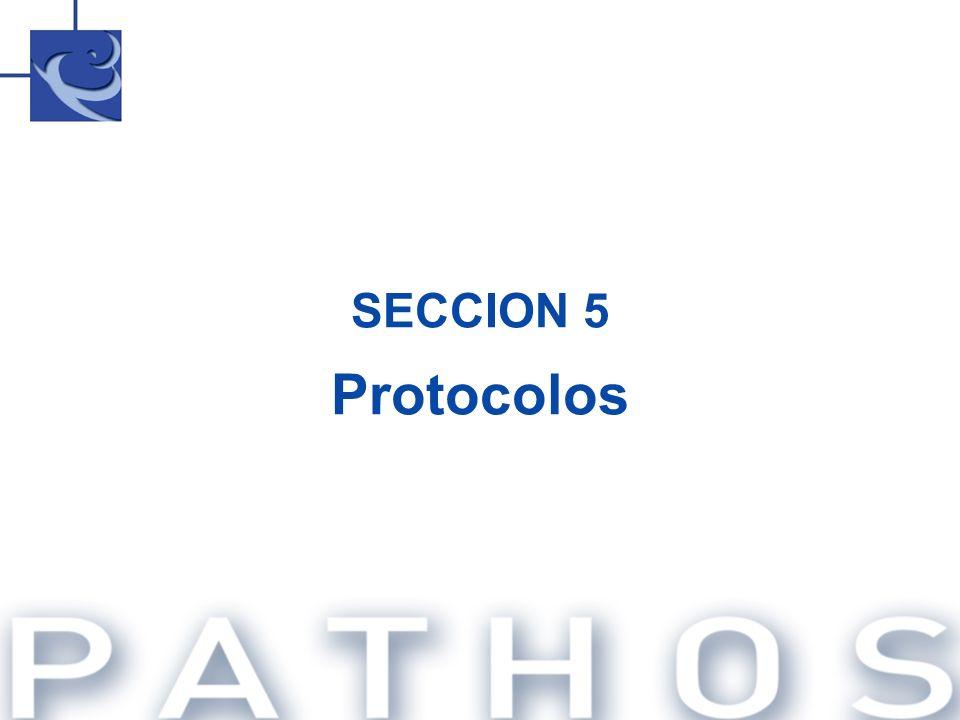 SECCION 5 Protocolos