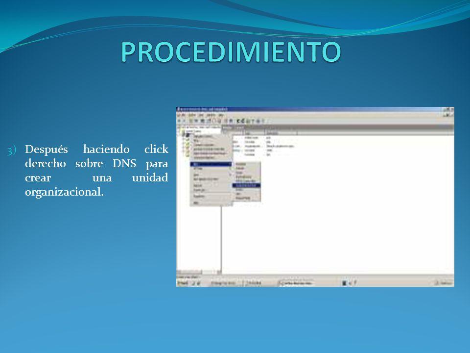 3) Después haciendo click derecho sobre DNS para crear una unidad organizacional.