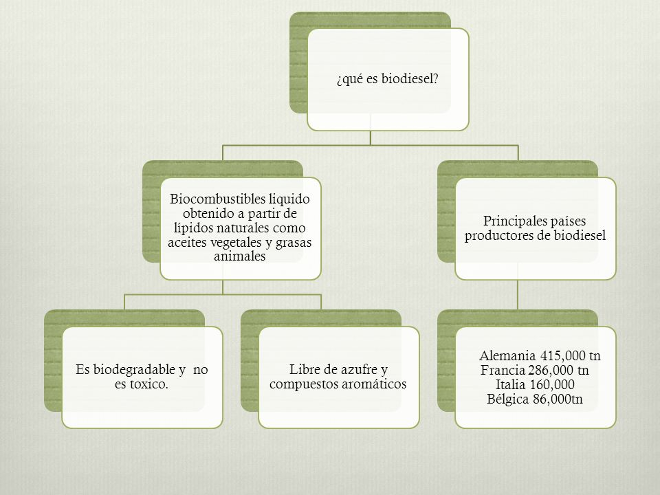 Chlorella Pyrenoidosa Producción de aceite a partir de algas 200 veces mayor que en plantas Colza: de 100 a 1 40 m3/km2.