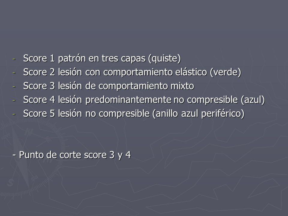 - Score 1 patrón en tres capas (quiste) - Score 2 lesión con comportamiento elástico (verde) - Score 3 lesión de comportamiento mixto - Score 4 lesión