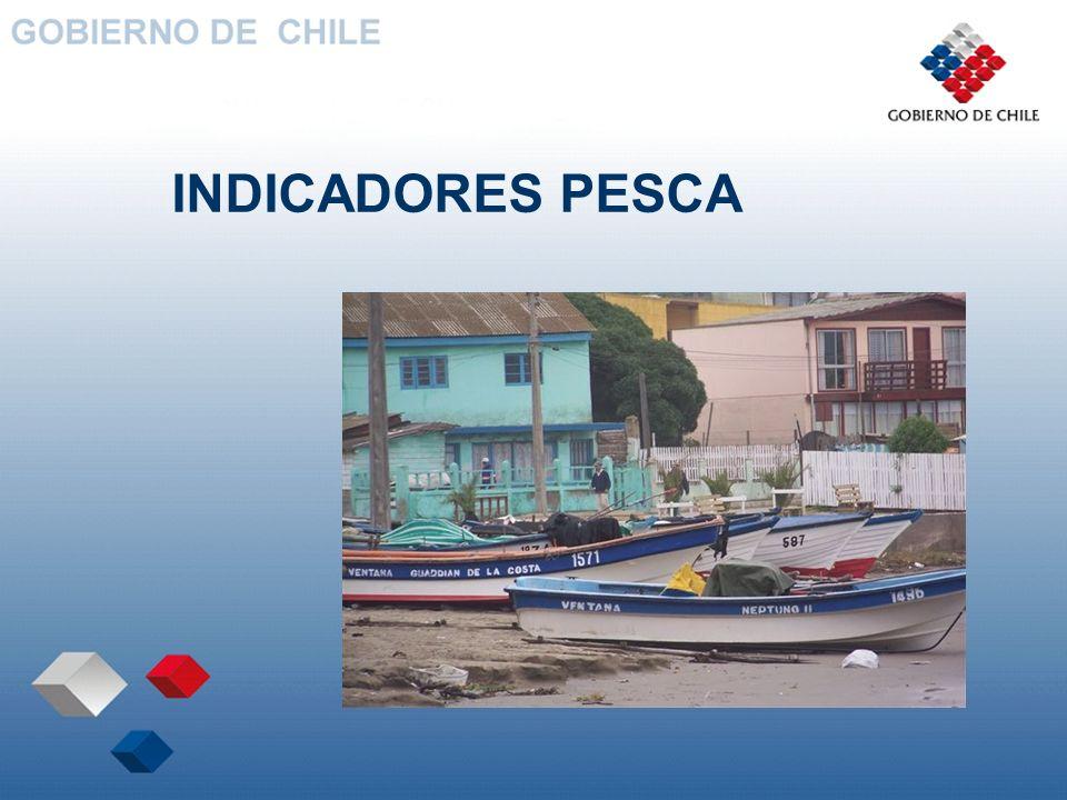 INDICADORES PESCA