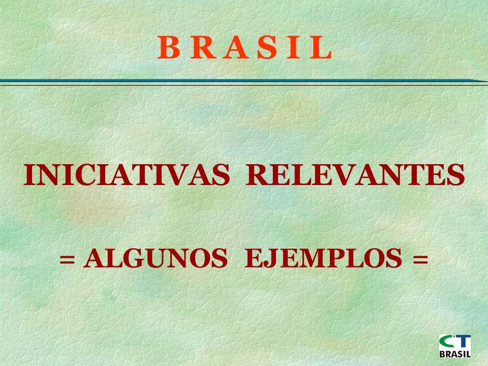 INICIATIVAS RELEVANTES = ALGUNOS EJEMPLOS = B R A S I L