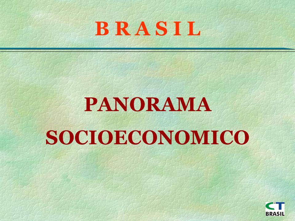 PANORAMA SOCIOECONOMICO B R A S I L