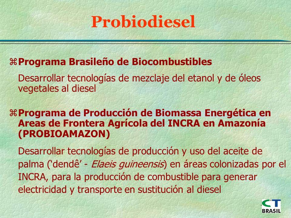 21 Probiodiesel zPrograma Brasileño de Biocombustibles Desarrollar tecnologías de mezclaje del etanol y de óleos vegetales al diesel zPrograma de Producción de Biomassa Energética en Areas de Frontera Agrícola del INCRA en Amazonía (PROBIOAMAZON) Desarrollar tecnologías de producción y uso del aceite de palma (dendê - Elaeis guineensis) en áreas colonizadas por el INCRA, para la producción de combustible para generar electricidad y transporte en sustitución al diesel
