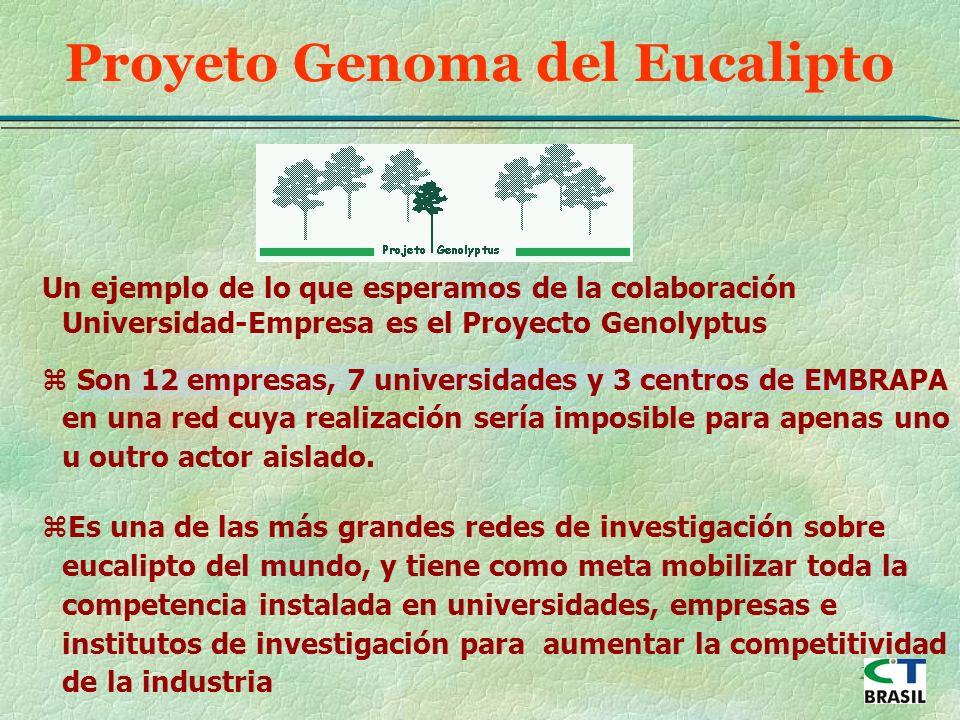 25 Proyeto Genoma del Eucalipto Un ejemplo de lo que esperamos de la colaboración Universidad-Empresa es el Proyecto Genolyptus z Son 12 empresas, 7 universidades y 3 centros de EMBRAPA en una red cuya realización sería imposible para apenas uno u outro actor aislado.