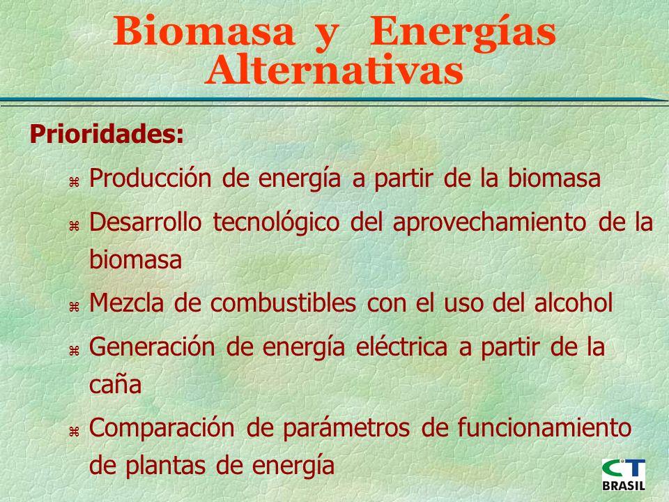 Prioridades: z Producción de energía a partir de la biomasa z Desarrollo tecnológico del aprovechamiento de la biomasa z Mezcla de combustibles con el uso del alcohol z Generación de energía eléctrica a partir de la caña z Comparación de parámetros de funcionamiento de plantas de energía Biomasa y Energías Alternativas