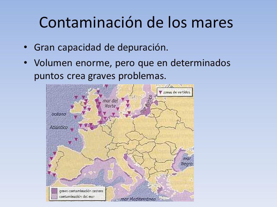 Contaminación de los mares Gran capacidad de depuración. Volumen enorme, pero que en determinados puntos crea graves problemas.