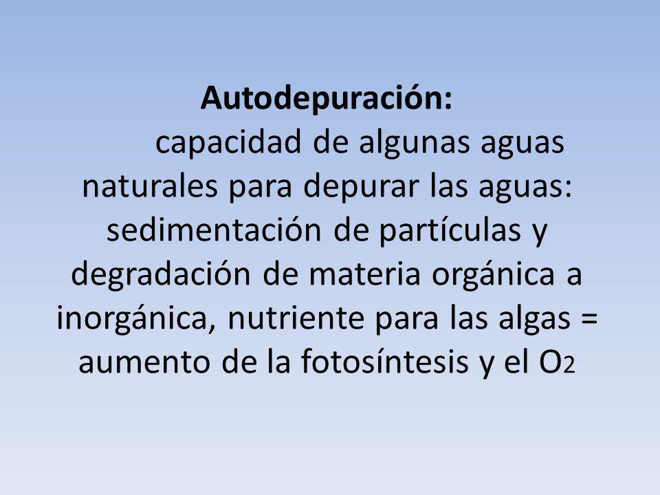 Autodepuración: capacidad de algunas aguas naturales para depurar las aguas: sedimentación de partículas y degradación de materia orgánica a inorgánic