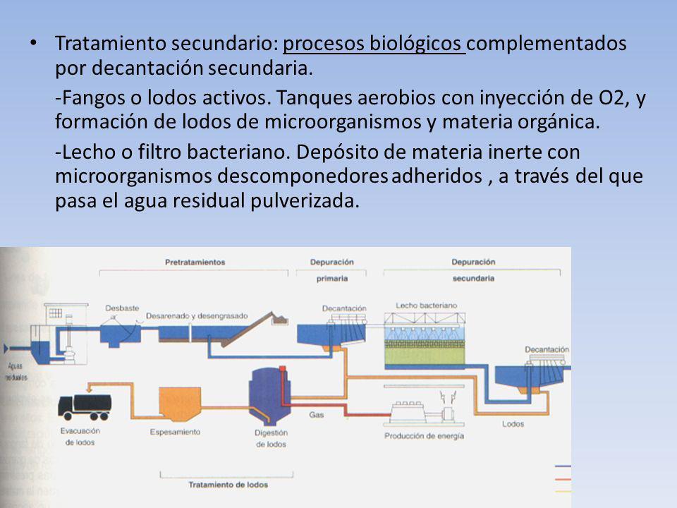 Tratamiento secundario: procesos biológicos complementados por decantación secundaria. -Fangos o lodos activos. Tanques aerobios con inyección de O2,
