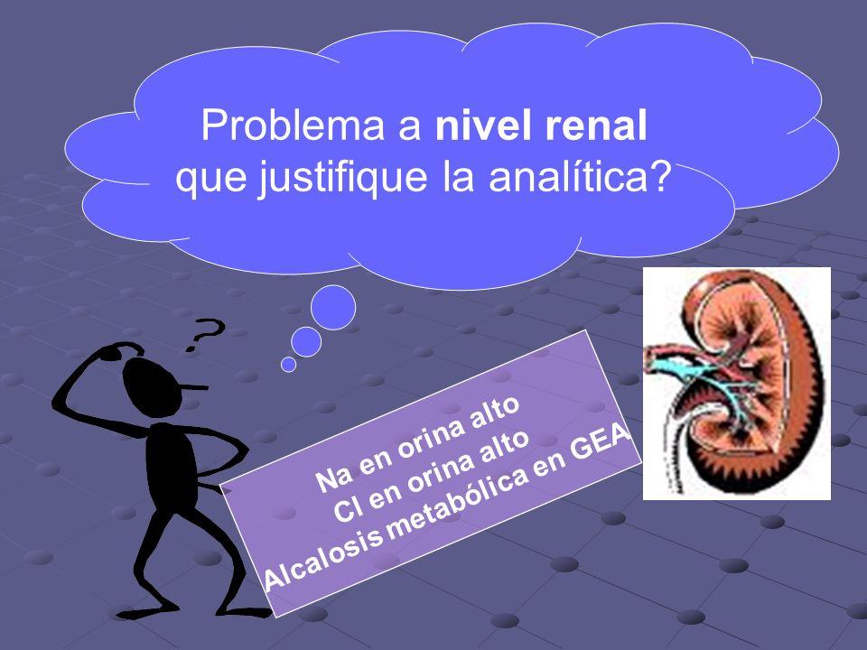 Problema a nivel renal que justifique la analítica.