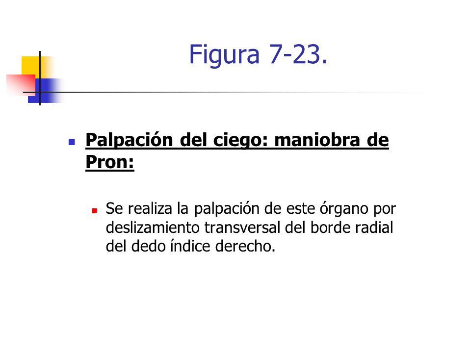 Figura 7-23. Palpación del ciego: maniobra de Pron: Se realiza la palpación de este órgano por deslizamiento transversal del borde radial del dedo índ