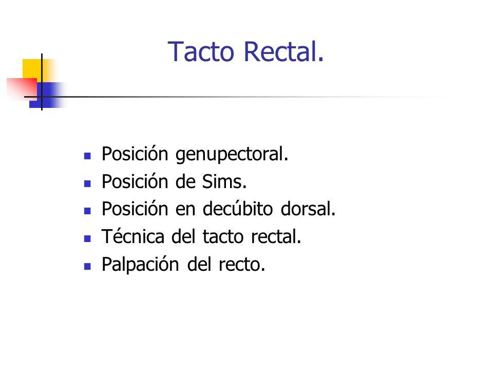 Tacto Rectal. Posición genupectoral. Posición de Sims. Posición en decúbito dorsal. Técnica del tacto rectal. Palpación del recto.