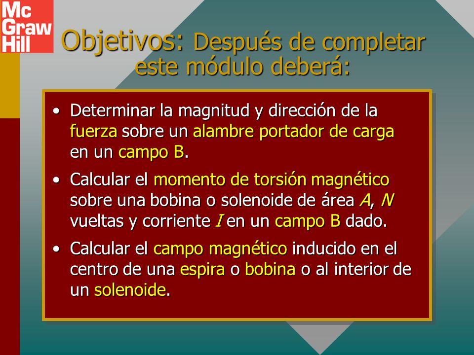 Capítulo 30 – Campos magnéticos y momento de torsión Presentación PowerPoint de Paul E. Tippens, Profesor de Física Southern Polytechnic State Univers