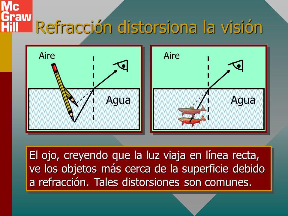 Refracción distorsiona la visión Agua Aire Agua Aire El ojo, creyendo que la luz viaja en línea recta, ve los objetos más cerca de la superficie debido a refracción.