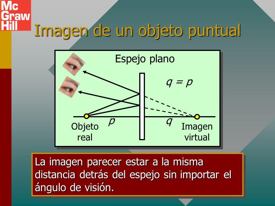 Real y virtual Las imágenes y objetos reales se forman mediante rayos de luz reales. (las imágenes reales se pueden proyectar en una pantalla.) Las im