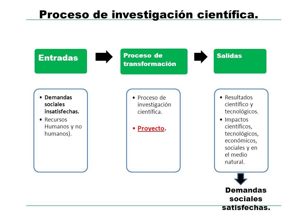 Entradas Demandas sociales insatisfechas. Recursos Humanos y no humanos). Proceso de transformación Proceso de investigación científica. Proyecto. Sal