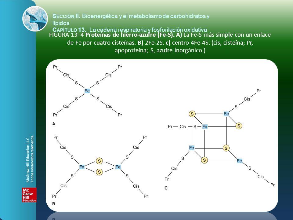 FIGURA 13–4 Proteínas de hierro-azufre (Fe-S). A) La Fe-S más simple con un enlace de Fe por cuatro cisteínas. B) 2Fe-2S. c) centro 4Fe-4S. (cis, cist