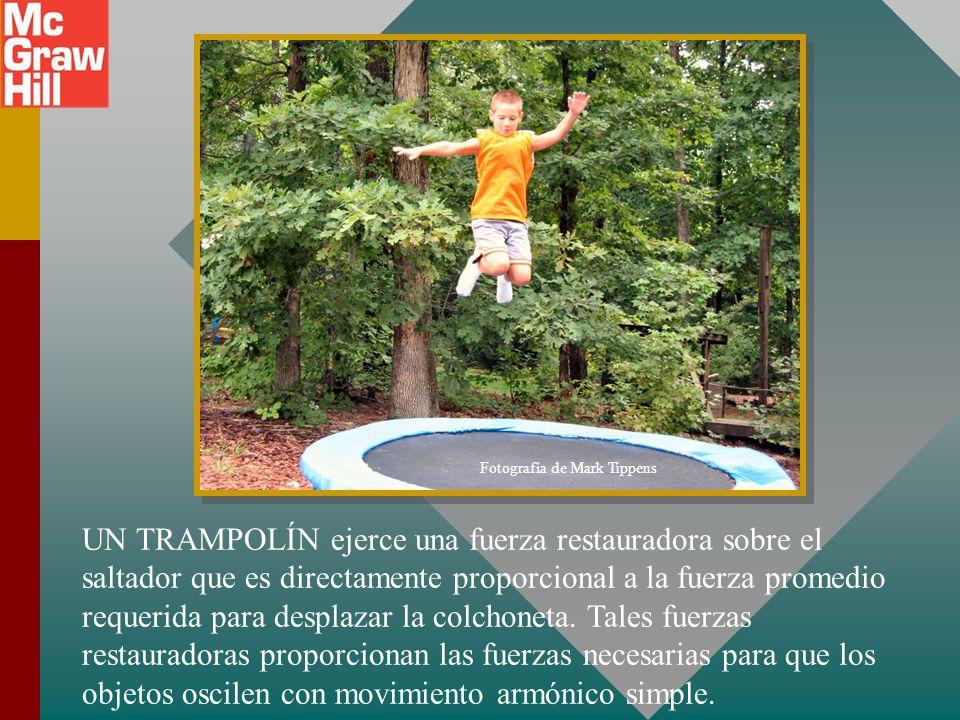 Capítulo 14 – Movimiento armónico simple Presentación PowerPoint de Paul E. Tippens, Profesor de Física Southern Polytechnic State University © 2007