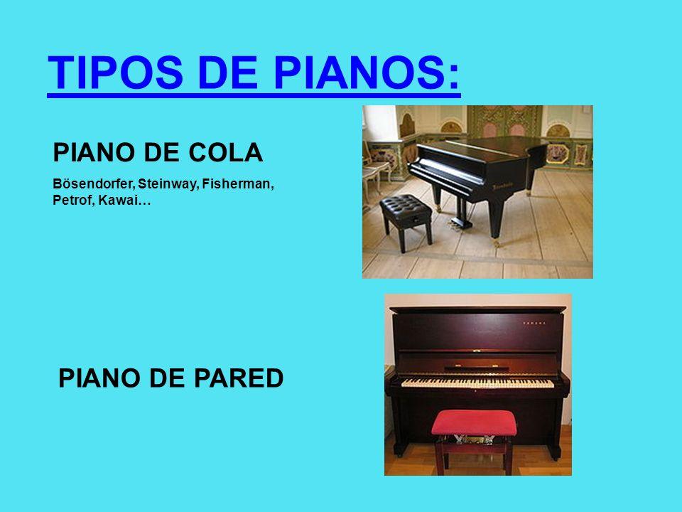 TIPOS DE PIANOS: PIANO DE COLA Bösendorfer, Steinway, Fisherman, Petrof, Kawai… PIANO DE PARED