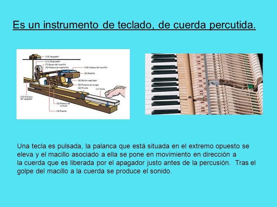 Es un instrumento de teclado, de cuerda percutida. Una tecla es pulsada, la palanca que está situada en el extremo opuesto se eleva y el macillo asoci