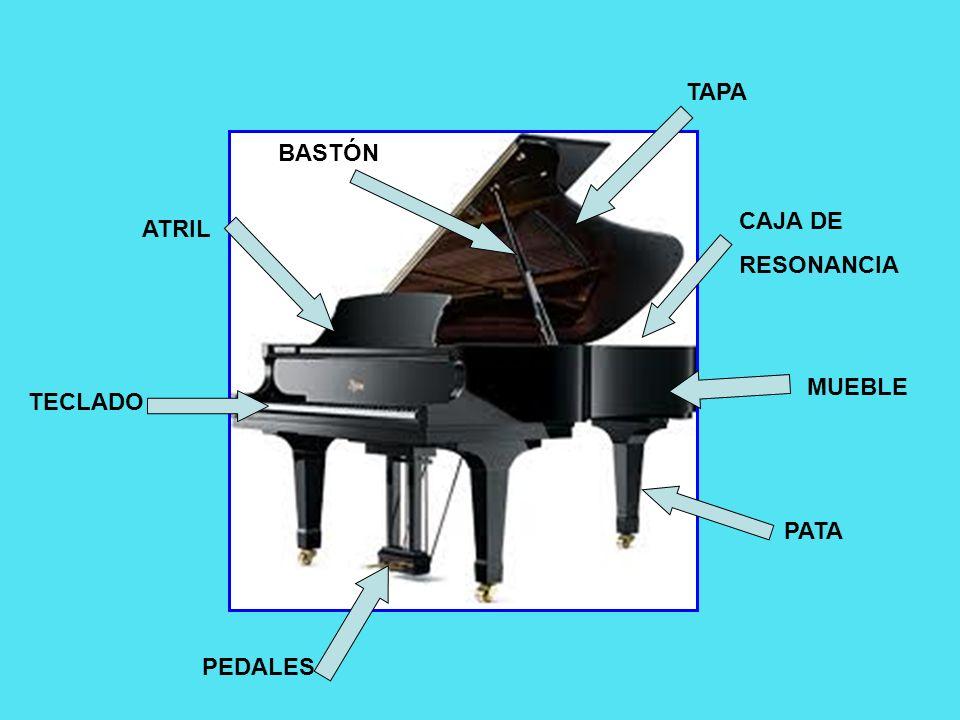 EL TECLADO Los pianos modernos tienen 88 teclas, 36 negras y 52 blancas.
