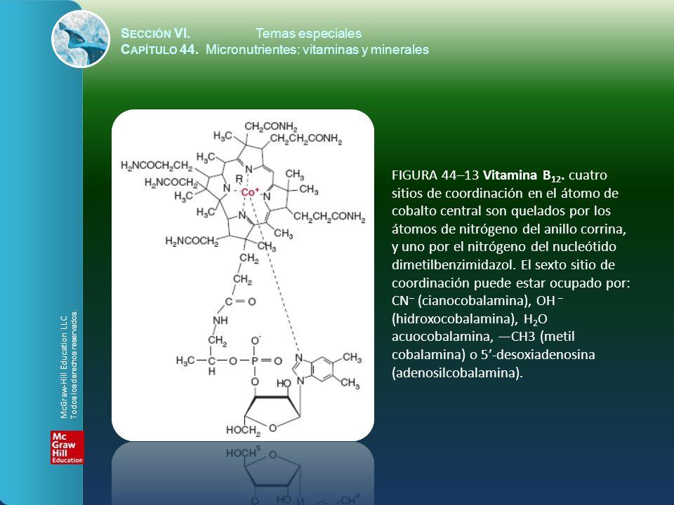 S ECCIÓN VI.Temas especiales C APÍTULO 44. Micronutrientes: vitaminas y minerales FIGURA 44–13 Vitamina B 12. cuatro sitios de coordinación en el átom