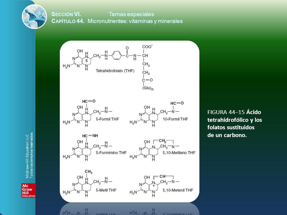 S ECCIÓN VI.Temas especiales C APÍTULO 44. Micronutrientes: vitaminas y minerales FIGURA 44–15 Ácido tetrahidrofólico y los folatos sustituidos de un